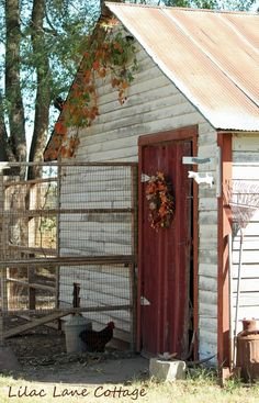 Lilac Lane Cottage - Chicken coop/shed Easy Chicken Coop, Chicken Runs, Chicken Barn, Clean Chicken, Country Farm, Country Life, Country Living, Chickens And Roosters, Farms Living