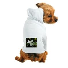 MAGNOLIA IN MAY Dog Hoodie > MAGNOLIA IN MAY > Admin Store