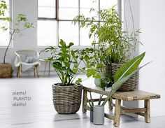 Spring European Interior Trends 2015