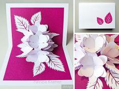 Pop-up | Hortensie . Hydrangea