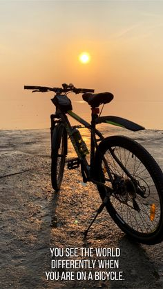 Bike Quotes, Cycling Quotes, Downtown Photography, Bicycle Pictures, Holi Photo, Moutain Bike, Dog Photos, Bicycles, Mtb
