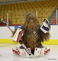 I didn't know Brent Burns was a goalie