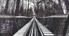 You Can Ride This Snowcoaster At The Top Of Blue Mountain featured image Ontario Travel, Blue Mountain, Railroad Tracks, Toronto, Coasters, Survival, Hiking, Camping, Snow