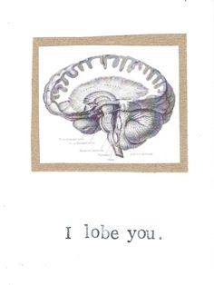 I Lobe You Card | Funny Brain Anatomy Science Pun Nerdy Geeky Psychology Medical Humor Teacher Gift Valentine Love For Him Doctor Nurse by ModDessert on Etsy https://www.etsy.com/listing/195787624/i-lobe-you-card-funny-brain-anatomy