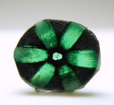 Colombian Emerald Trapiche, the rarest of all emeralds. They get their name from the spokes in the sugar mills