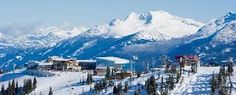 pics of whistler - Google Search