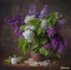 Still life photo, Flower Arrangements Simple, Flower Vases, Flower Art, Beautiful Bouquet Of Flowers, Lilac Flowers, Purple Flowers Wallpaper, Lilac Painting, Lilac Bouquet, Still Life Flowers
