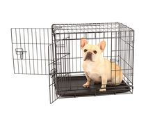 Carlson Secure and Compact Double Door Metal Dog Crate, Small with Divider Panel *** See this great image  : Dog stuff