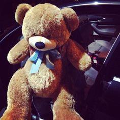 get me bears xx