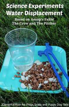 Science Experiments about Water Displacement that integrates the fable about the crow and the pitcher of water