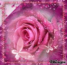 Image result for pink roses gifs