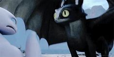 Funny Cute Cats Toothless Ideas For 2019 Httyd Dragons, Dreamworks Dragons, Cute Dragons, Disney And Dreamworks, Disney Pixar, Httyd 3, Toothless Dragon, Hiccup And Toothless, Hiccup And Astrid