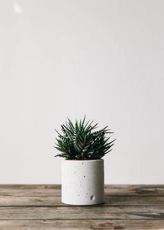 Simple and beautiful planters for cacti and succulents. Simple and beautiful planters for cacti and Leaves Wallpaper Iphone, Plant Wallpaper, Concrete Planters, Garden Planters, Wall Planters, Succulent Planters, Balcony Garden, Fake Plants Decor, Plant Decor