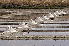 Marais salants ile de Re - Île de Ré http://www.tourisme.fr/1469/tourisme-le-bois-plage-en-re.htm