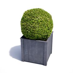 Garden Planters in zinc galvanized steel. High quality bespoke steel planters in square and trough designs. Large, heavy duty planters for exterior use. Wooden Planters, Planter Boxes, Large Square Planters, Investment Property For Sale, Metal Trellis, British Steel, Garden Structures, Galvanized Steel, Exterior
