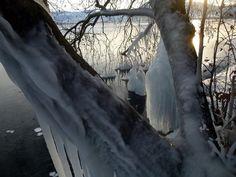 Ο Στέλιος Φόρλιακας φωτογραφίζει τα ίδια μέρη της λίμνης, τις παγοδημιουργίες πριν και μετά το χ... Antonio Mora, Artwork, Outdoor, Outdoors, Work Of Art, Auguste Rodin Artwork, Artworks, Outdoor Games, The Great Outdoors