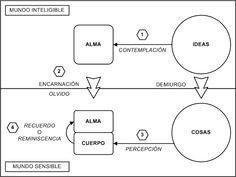 teoria de platon - los objetos individuales son los conceptos universales