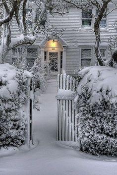 Winter scene and garden gate