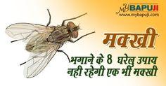 मक्खी भगाने के 8 घरेलु उपाय |नही रहेगी एक भी मक्खी | Makkhi Bhagane ke Upay herbs ,home remedies for cough ,home remedies for cold ,gharelu nuskhe ,ayurved upchar ,  dadi maa ke gharelu nuskhe ,desi nuskhe in hindi ,देसी नुस्खे ,आयुर्वेदिक नुस्खे ,home remedies in hindi ,  desi ilaj, आसाराम बापूजी ,आसाराम बापू , आशाराम बापू , सत्संग    #mybapuji,#asharamjibapu ,#bapu, #bapuji ,#asaram, #ashram, #asaramji, #sant, #asharamji ,#asharam ,
