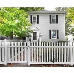 Housesitting assignment in Cambridge, MA, USA