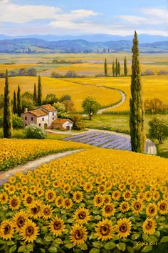 Stunning sea of rudbeckia by Artist Sung Kim.