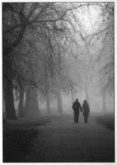 x35 Puistokävelyllä sumuisten puiden keskellä | Perromania - pieni postikorttikauppa