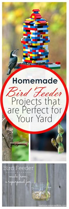 Homemade Bird Feeder Projects that are Perfect for Your Yard (1)