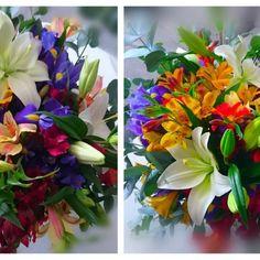 BUKIETY - WWW.BIALEKWIATY.PL kolorowy bukiet, kolorowe kwiaty, piękny bukiet