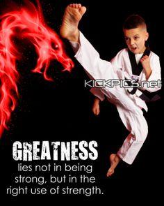 kickpics kickpics.net greatness kick kicking boy taekwondo tkd martialarts karate