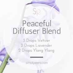 This is one of my favorite diffuser blends to use in the evening especially after a long and hectic day!✨  Vetiver: * Calming, grounding effect on emotions * Promotes feelings of calm * Is rich in sesquiterpenes, which gives it a grounding effect  Lavender: * Lavender is widely used for its calming and relaxing qualities * This essential oil evokes positive feelings of self-awareness  Ylang Ylang: * Promotesa calming, uplifting effect