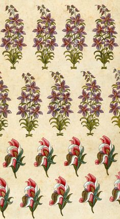 Image of textile design. india, century by V&A Images Indian Prints, Indian Textiles, Vintage Textiles, Textile Prints, Textile Patterns, Print Patterns, Floral Prints, Hand Painted Wallpaper, Fabric Wallpaper