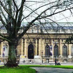 #mahgeneve #museum #geneva #genève #geneve #tree #winter #street