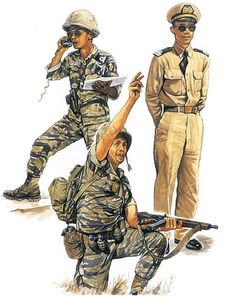 """VNMC (Vietnamese Marine Corps) : • Artillery officer, Saigon, 1968 • Squad leader, Delta region, 1967 • Sevice dress, 1965"", Paul Hannon"