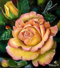Картины (живопись) : Роскошная роза