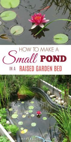 Building a small garden pond in a raised garden bed is a good solution when you need better accessibility or cannot dig into the ground. #garden #gardenpond #raisedbeds #waterfeature