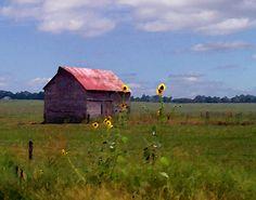 Kansas Landscape Paintings | Kansas Landscape by Steve Karol