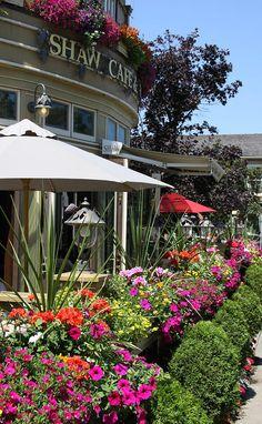 ✮ Shaw Cafe - Wine Bar - Niagara On The Lake - Ontario, Canada