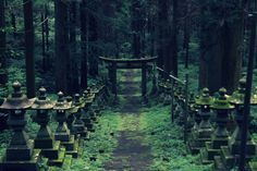 In the town of Takamori-machi, in the Kumamoto Prefecture of Japan, lies a forest shrine known as Kamishikimikumano. The beautiful Shinto shrine was setting for a popular one-shot, shōjo man...