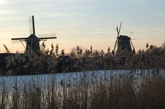 Windmills in winter time Beautiful Dream, Windmills, Winter Time, Utility Pole, Netherlands, Holland, Amsterdam, River, City