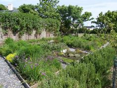 A very productive and attractive vegetable and herb garden at Renvyle House Hotel in Connemara.