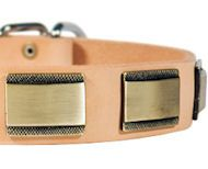 Rottweiler Leather Collar with Brass Plates $44.90