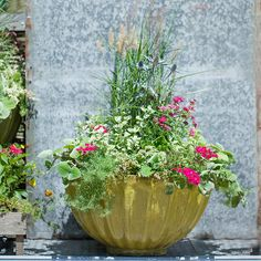 Cappuccino Bowl Planter in Garden PLANTERS Planters All-Weather at Terrain