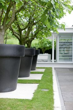 Large Planters, Outdoor Planters, Modern Landscaping, Outdoor Landscaping, Farm Gardens, Outdoor Gardens, Backyard Garden Design, Garden Architecture, Garden Structures