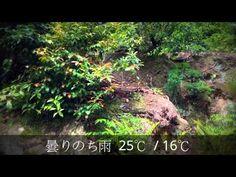 京の天気 2015年5月18日(月)【京都はんなり天気】建勲神社・稲荷社編 - YouTube