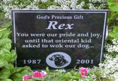 Funny Tombstones - Gallery