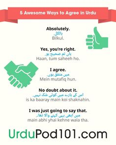 5 Awesome ways to agree in Urdu