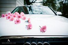 Einzelne blüten, z.b. Gerbera oder sträußchen mit passenden Blüten und in passender farbe  Halten diese stöpsel?