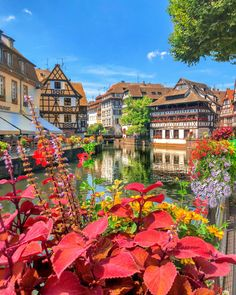 New post on breathtakingdestinations Strasbourg, World Photography, Travel Photography, France Art, Villa, Beautiful Places To Travel, Amazing Places, Visit France, French Countryside