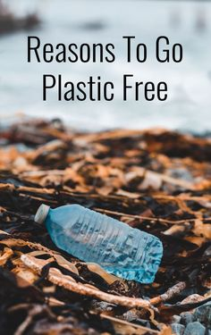 Why should we try to find reusable products when the plastic versions are so readily available and it\'s what most of us are used to? Here are some great reasons to go plastic free.