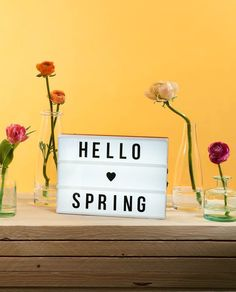 Lightbox mit Frühlingsspruch.